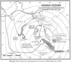 essay on the tsunami of th  damages by tsunami
