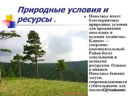 Презентация на тему Реферат по географии Сергеева Д С Волга  7 Природные условия и ресурсы