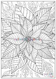 If poinsettias are exposed to low outside temperatures for even a few minutes they can chill or even freeze, causing the leaves to droop and fall off. Poinsettia Colouring Page 1