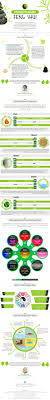 water feng shui element infographics. Infographic Feng Shui Elements And Bagua Map Water Element Infographics