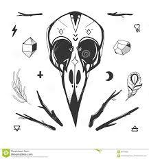 мистик установленный с черепом птицы иллюстрация вектора