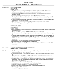 Php Programmer Resume Sample Php Programmer Resume Samples Velvet Jobs 11