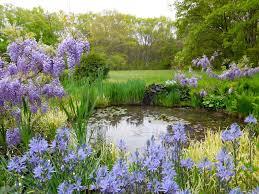 to cottage garden