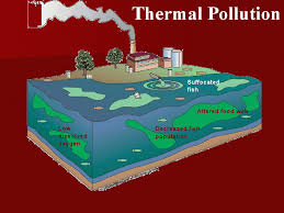 environmental pollution thermal pollution types pollution among recognized scientists and scholars there are generally two schools of thought when it comes to the effects of thermal pollution