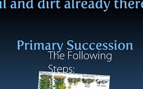 Primary Succession And Secondary Succession Venn Diagram The Difference Between Primary And Secondary Succession By