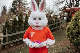 meet the easter bunny in drive thru