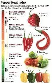 Which One Is The Hottest Chilli Pepper Or Wasabi Quora