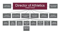 What Is An Organizational Chart Lamasa Jasonkellyphoto Co