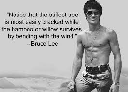 Bruce Lee Quotes Amazing 48 Inspirational Bruce Lee Quotes Download Free FB Cover Pic