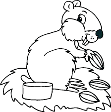 printable pictures of animals to color. Delighful Printable Printable Baby Animal Coloring Pages To Print Animals  Pictures Of   Inside Printable Pictures Of Animals To Color A