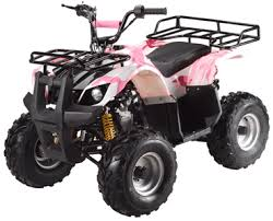 products by taotao atv manuals at chineseatvmanuals ata 110 d taotao ata 110 d 110cc chinese atv owners manual