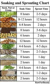 Chart Activating Nuts Next Phase In Fitness