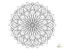 coloring pages flowers for adults 2.  Coloring Adult Coloring Pages Flowers Flower And For Adults To 2 C