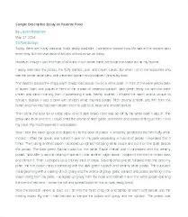 Descriptive Essay Food Examples Of A Descriptive Essay An Example Of A Descriptive Essay