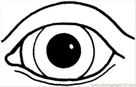 Small Picture An Eye Coloring Page Free Body Coloring Pages ColoringPages101com
