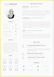 Professional Cv Sample Word Format Template Free Download