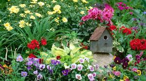 garden com. Fine Garden Flowers Garden Massachusetts Wallpaper On Garden Com E
