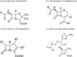 Chemical Structures Of Beta Lactam And Monobactam