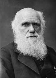 「1925, Charles Darwin's theory of evolution」の画像検索結果