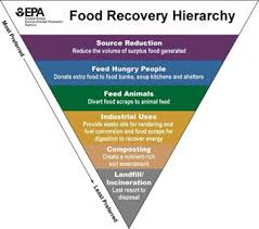 Reduce Wasted Food By Feeding Hungry People | Sustainable Management ...