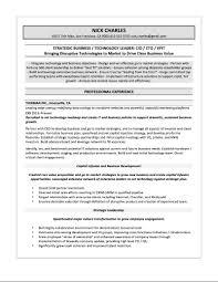 Sales Resume Format Samples Cv Sample Mid Career Change Lev Peppapp