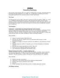 executive summary example business valuable executive summary example business report sample executive