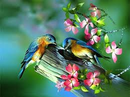 painting of birds in spring