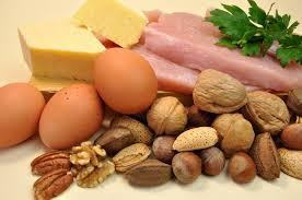 Waarin zitten eiwitten