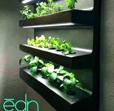 indoor vertical herb garden. Wonderful Vertical Herb Garden Wall Indoor Vertical Full Image  For Throughout Indoor Vertical Herb Garden