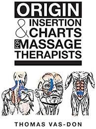 Origin Insertion Charts For Massage Therapists By Thomas