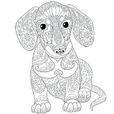 Art Of Dachshund Coloring Book Combined With Dachshund Coloring Book