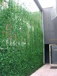 full image for freestanding outdoor privacy screens free standing garden screen uk sweet vertical garden green