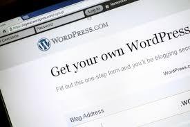WordPress Theme or Custom-build? Choosing your WordPress ...
