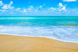 Seashore Pictures Download