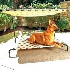 outdoor raised dog bed – motleyfamily.info
