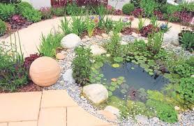 for a rockin garden