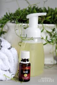ditch the toxinake this natural foaming handsoap yourself bonus it smells