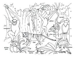 Enchanted Forest Colouring  petition at Fabriano Boutique also 1104 best Coloring Pages images on Pinterest   Coloring books likewise Peacock coloring   Etsy moreover  likewise Peacock Coloring Page for Adults   Easy Peasy and Fun as well Jungle   Forest   Coloring pages for adults   JustColor in addition Detailed Coloring Pages For Adults   coloring pages animals besides  additionally  as well Peacock Coloring Page for Adults   Easy Peasy and Fun additionally Adult Coloring Pages   GetColoringPages. on tigers coloring pages for adults nature enchantment
