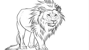 lion drawing. Beautiful Drawing Coloring PagesEasy Kids Drawing  Lion Pictures With YouTube