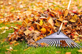 Fall Landscaping Landscaping Essentials For Fall Asphalt Materials