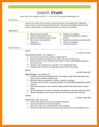 10 Resume Format Example By Nina Designs