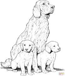 Your email address will not be published. Coloring Pages Pin By Julia On Colorings Dog Coloring Page Dog Coloring Page Puppy Coloring Pages H In 2021 Dog Coloring Page Puppy Coloring Pages Horse Coloring Pages