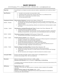 Examples Of Chronological Resume Sarahepps Com