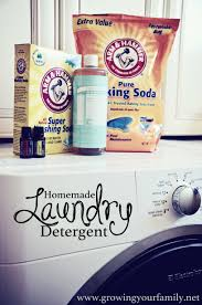 Homemade Liquid Laundry Detergent | Growing Your Family