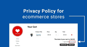 Privacy Policy for Ecommerce Stores - TermsFeed