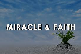 Miracle Quotes Cool 48 Quotes On Miracle And Faith Awesome Quotes
