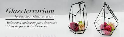 Small Picture Glass Terrarium Wholesale Home Decor HandicraftHandmade