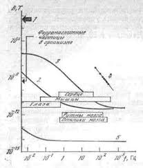 МАГНИТНЫЕ ПОЛЯ ЧЕЛОВЕКА Характерные значения и частотные спектры биомагнитных сигналов и шумов в окружающем пространстве