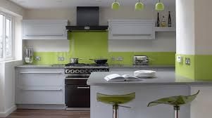 impressive light green kitchen koffiekitten doors design cabinet lime cabinets sweet furniture modern grass paint colors