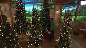 bethlehem lighting christmas trees. Perfect Bethlehem Lights Christmas Trees Qvc 15th Anniversary 6 5 Tree W Instant Power Page Lighting E